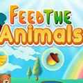 Karmienie zwierząt