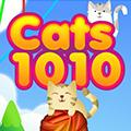 Koty 1010